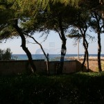Luxury seafront villa for sale in Italy: garden view
