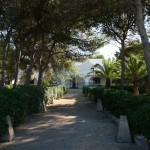 Luxury seafront villa for sale in Italy: garden